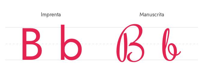 Letra B Imprenta y Manuscrita - Mayúscula y Minúscula